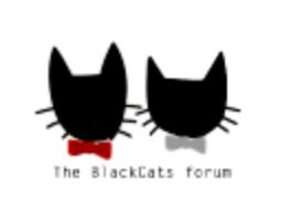 blackcats.fr